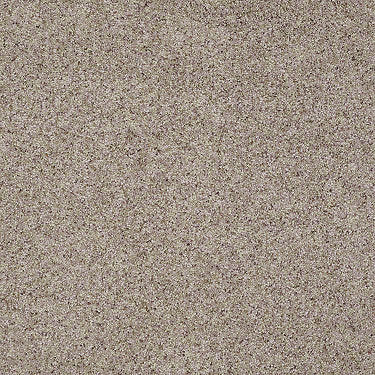 Lasting Impressions (A) Residential Carpet