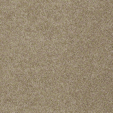 Special Occasion II Residential Carpet