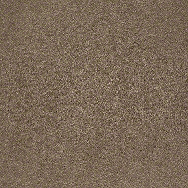 Unparalleled Delight II Residential Carpet