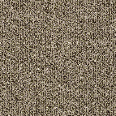 Striking Yet Residential Carpet