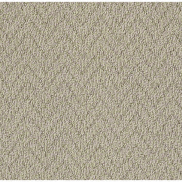 Urban Design Residential Carpet
