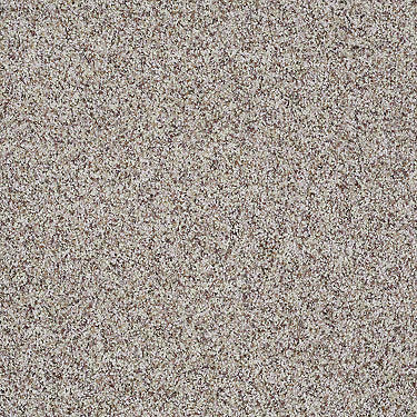 Titanium Accent Residential Carpet