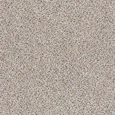 Silver Texture Accents Residential Carpet