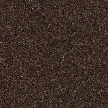 Find Your Comfort Ns Blue Residential Carpet