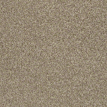 Find Your Comfort Tt II Residential Carpet