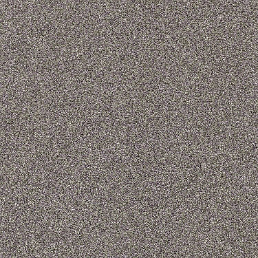 Find Your Comfort Tt Blue Residential Carpet