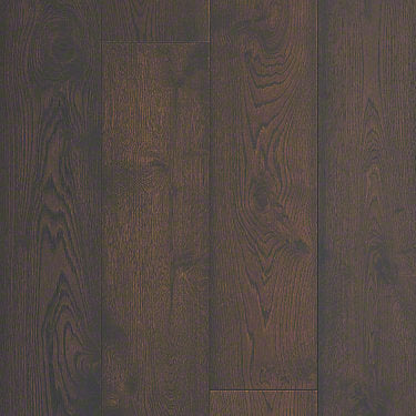 Product Sample of Shaw Floors Compute Hardwood  flooring in the color Trail Oak available at Standard Paint and Flooring.