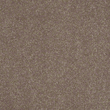 Home News I 12' Residential Carpet