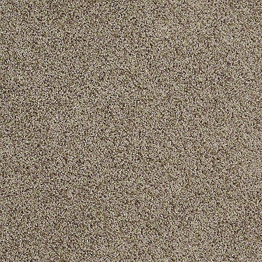 Floating Bubbles II Residential Carpet
