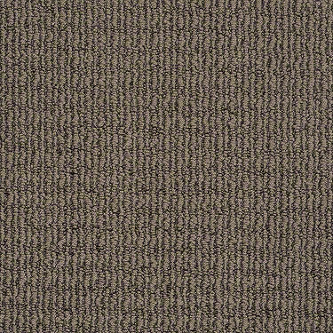 Delighted Residential Carpet