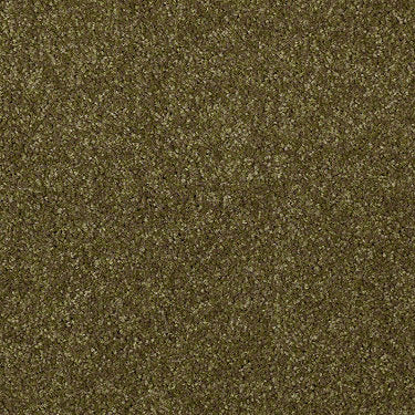 Invite Possibility III Residential Carpet