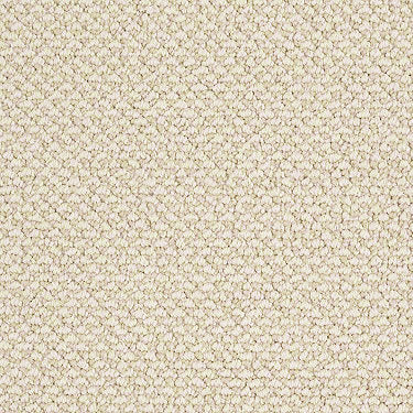 Crafting Beauty Residential Carpet