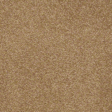 Sandy Hollow II 15' Residential Carpet