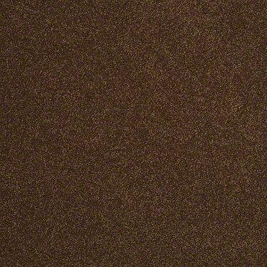Sandy Hollow III 12' Residential Carpet