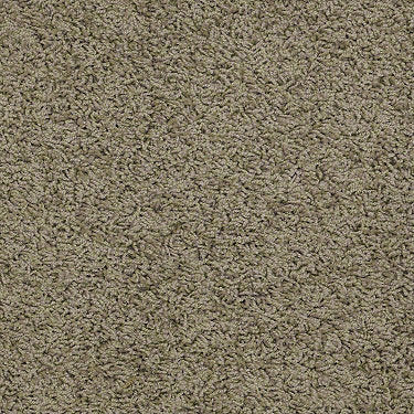 Great Approach (S) Residential Carpet