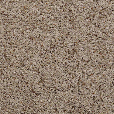 Great Approach (B) Residential Carpet