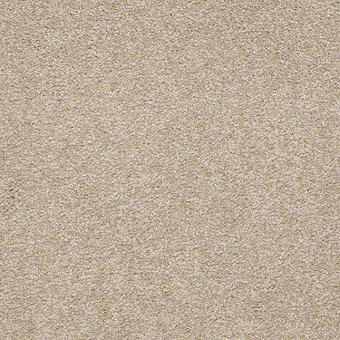 Bright Spirit III 12' Residential Carpet