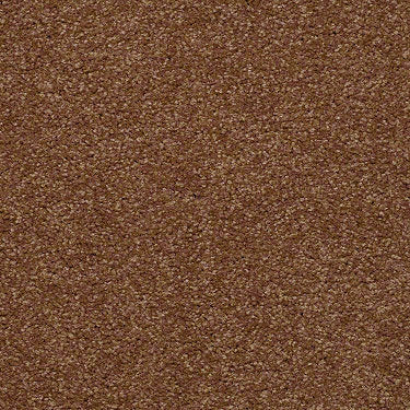 Versatile Design I 12' Residential Carpet