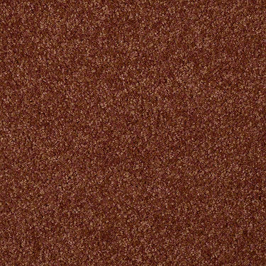 Versatile Design II Residential Carpet