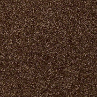 Versatile Design III Residential Carpet