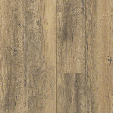 Product sample of Shaw Floors Ellenburg Style laminate flooring in the color Golden Sands available at Standard Paint and Flooring.