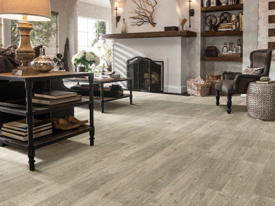 Room Image of Shaw Floors Ares Resilient Residential Roll flooring in the color Tricca available at Standard Paint and Flooring.