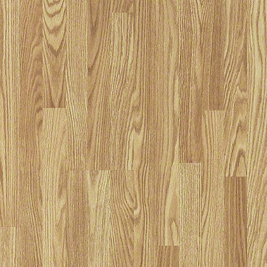 Product sample of Shaw Floors Classic Concepts Style laminate flooring in the color Big Bend Oak available at Standard Paint and Flooring.