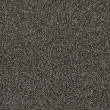 Cause II Residential Carpet