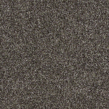 Compound Residential Carpet