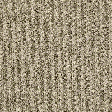 Netarts Beach Residential Carpet