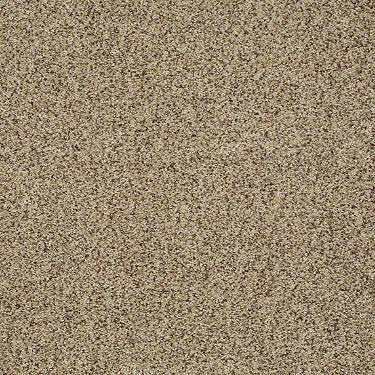 Seaside Beach Residential Carpet