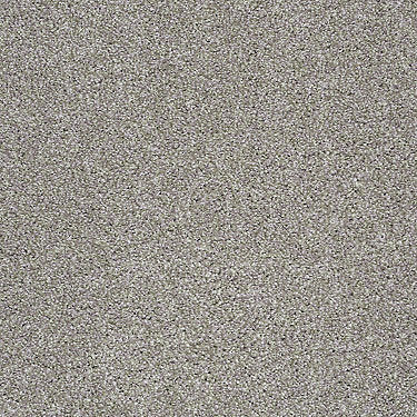 Santa Cruz Beach Residential Carpet