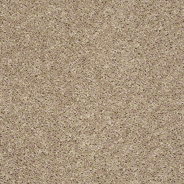 Ventura Beach Residential Carpet