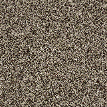 Coral Beach I Residential Carpet