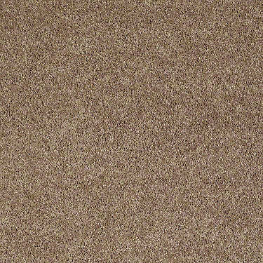 North Shore III Residential Carpet