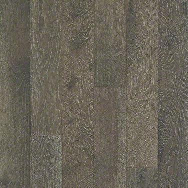 Product Sample of Shaw Floors Continental Hardwood  flooring in the color Ashlee Grey available at Standard Paint and Flooring.
