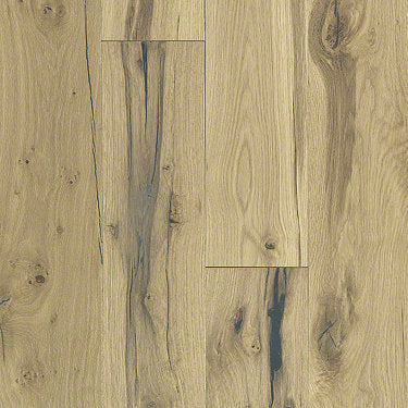 Product Sample of Shaw Floors Seaside Hardwood  flooring in the color Timber available at Standard Paint and Flooring.