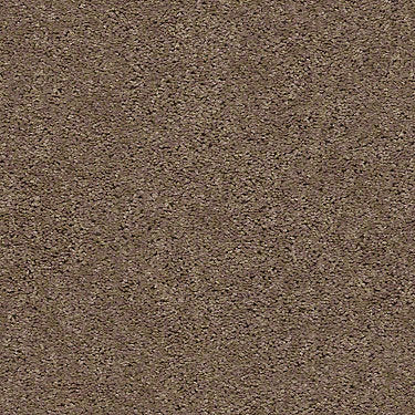 XV442 Residential Carpet