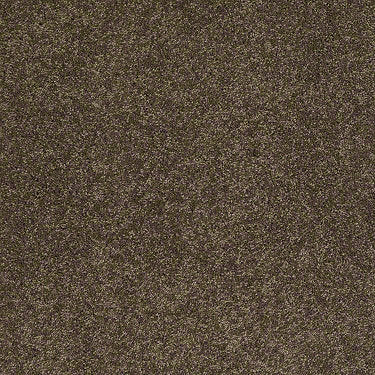 Emotions Residential Carpet