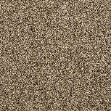 Shady Canyon Residential Carpet