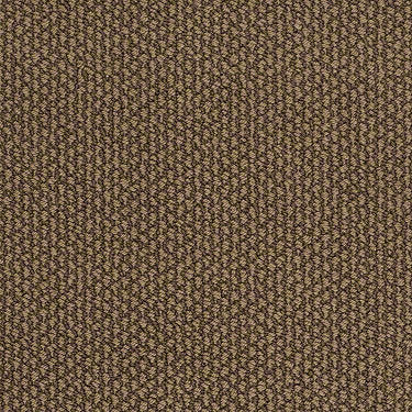 Careless Whisper Residential Carpet