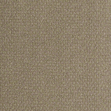 Sweet And Simple Residential Carpet