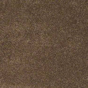 Forever Residential Carpet