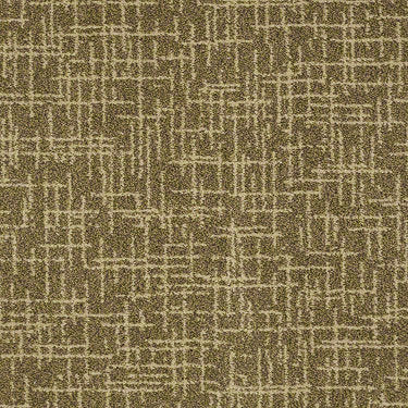 Applause Residential Carpet