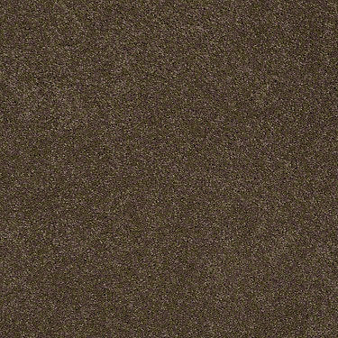 Sasha Residential Carpet