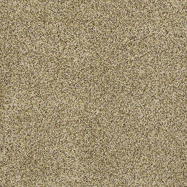 Center Stage II Residential Carpet
