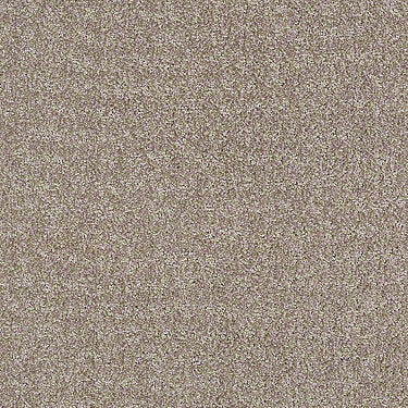 Atria Residential Carpet