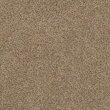 Serenity Cove Residential Carpet