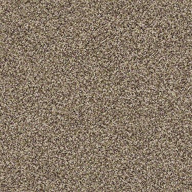 Ensemble Residential Carpet
