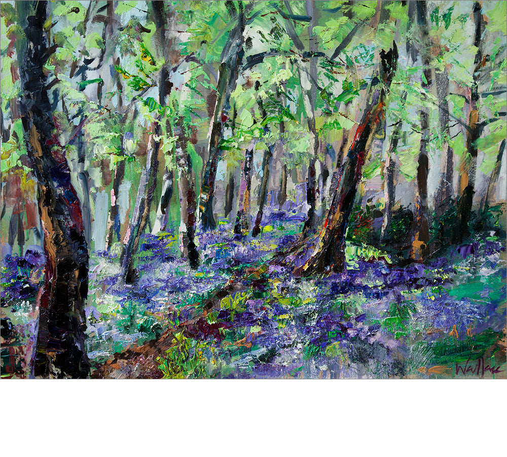 Askwith Bluebells